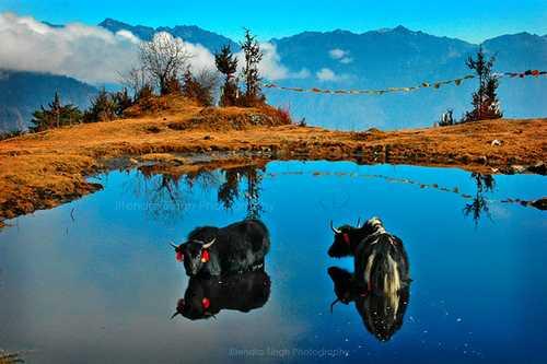 Guwahati –Shillong –Cherrapunjee | Trip