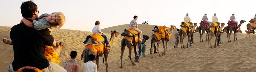 Trip For Jodhpur Jaisalmer Bikaner