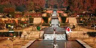 Wildlife Tour Kashmir