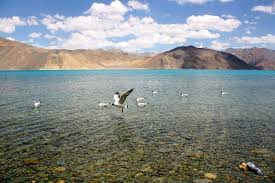Best Place in Ladakha