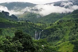 Destination Scenic Sri Lanka   09 Nts 10 Day
