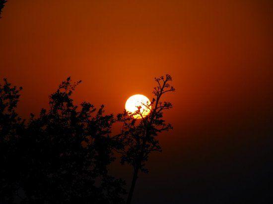 Mount Abu 2N | Udaipur 2N