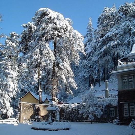 Tour Shimla Manali Dharamshala Dalhousie Amritsar