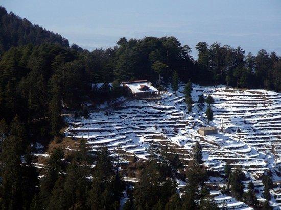 Tour Shimla Manali Dharamshala Dalhousie