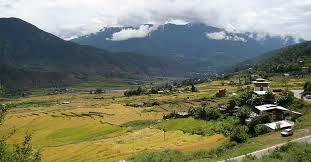 The Royal Bhutan