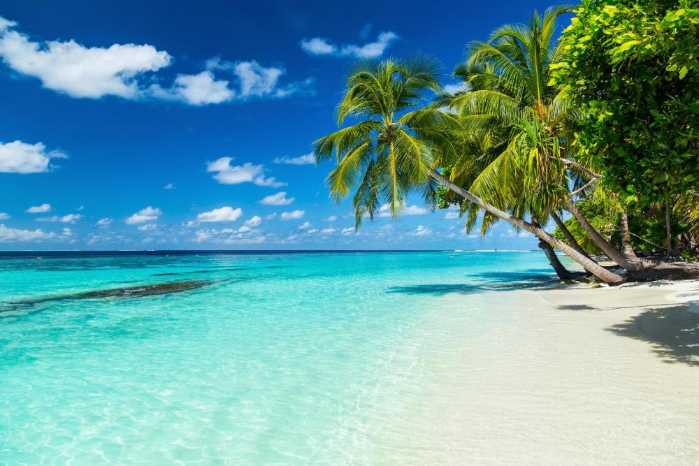 Destination Maldives Tour Package