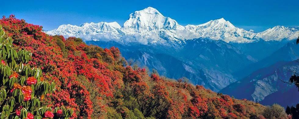 DESTINATION GLORIOUS NEPAL TRIP