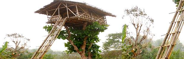 North East Guwahati Meghalya Package