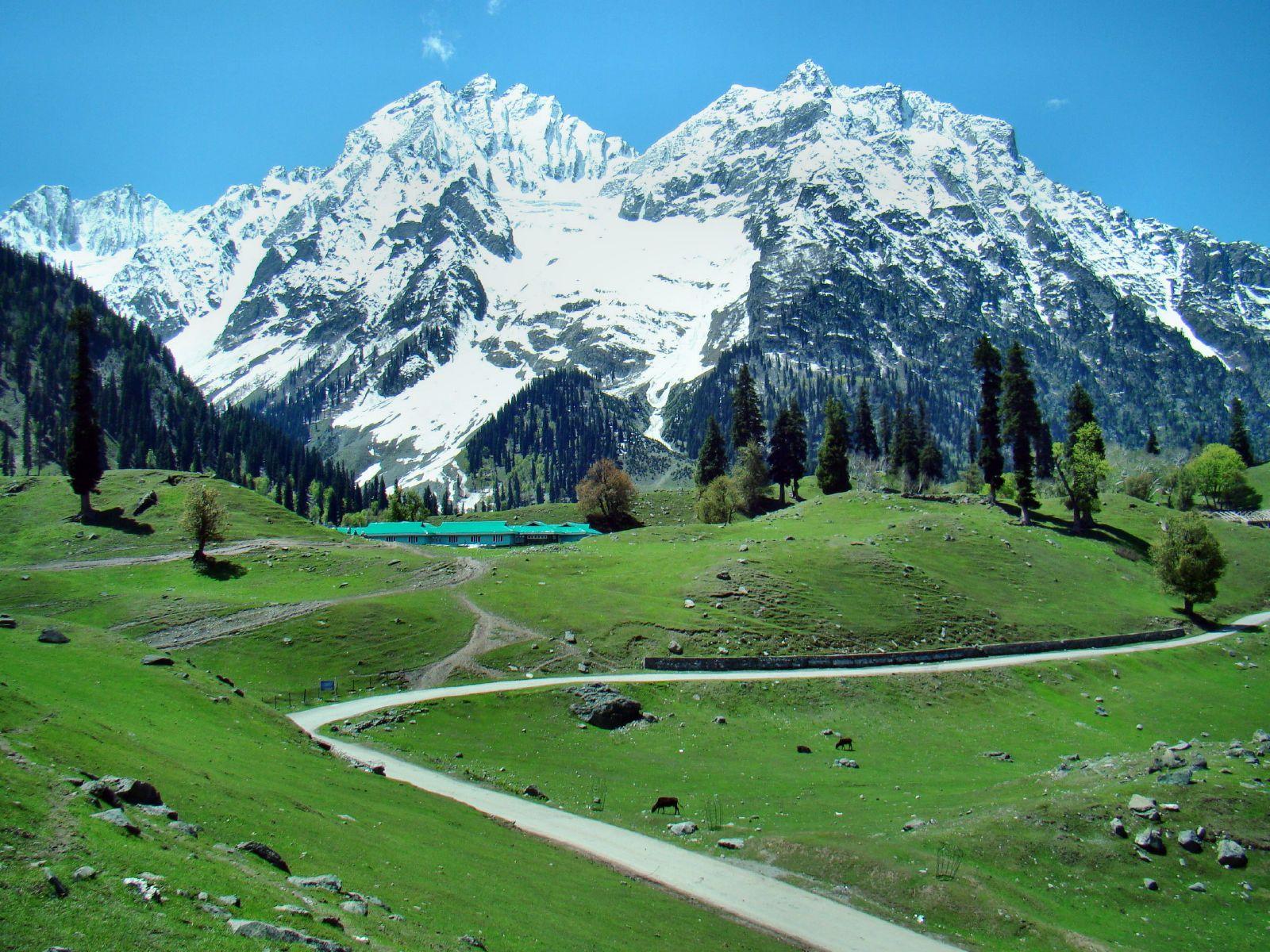 Srinagar-Sonmarg-Pahalgam-Gulmarg