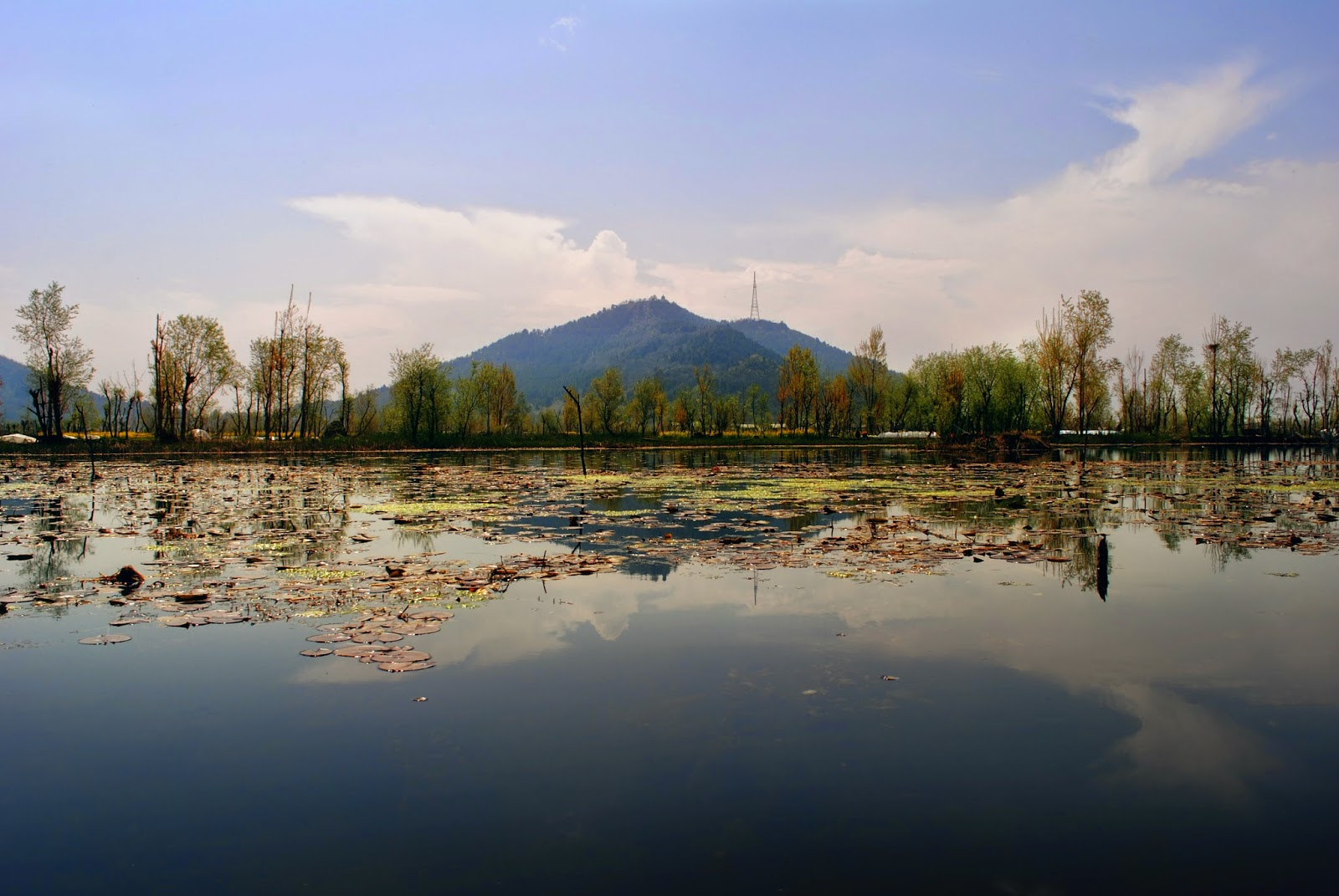 Best Honeymoon Destination in Kashmir