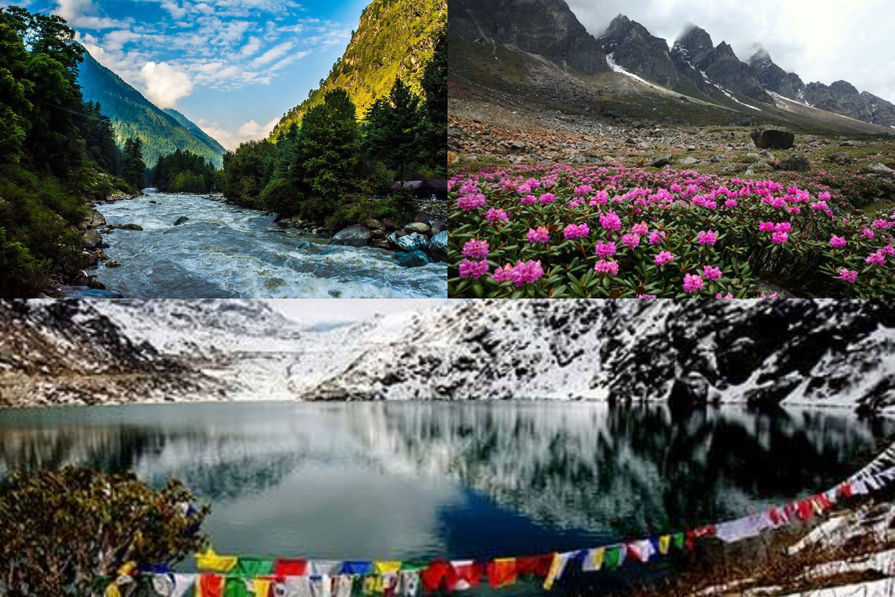 GANGTOK WITH LACHUNG AND PELLING AND DARJEELING TOUR