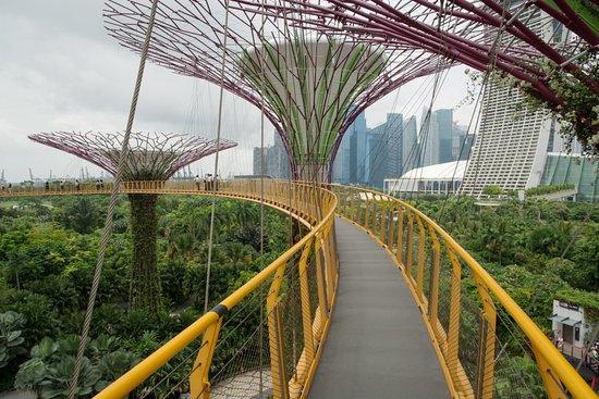 Amazing Singapore