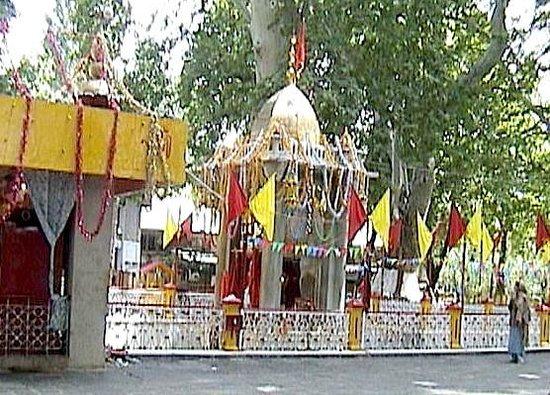 Dachigam with Offbeat Kashmir