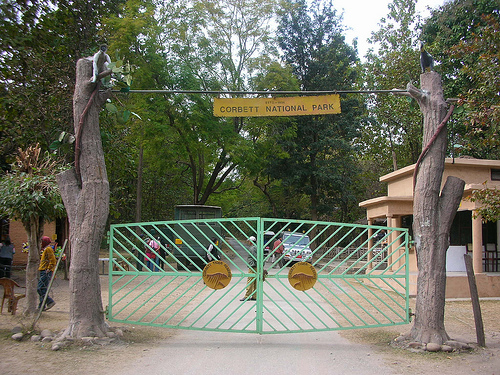 NORTH EAST PACKAGE MANAS NATIONAL PARK